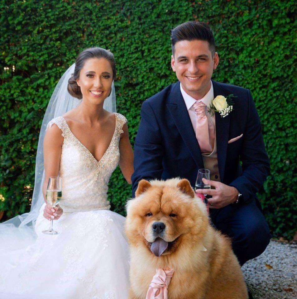 Chow Chow Wedding Dresses Photo Barney