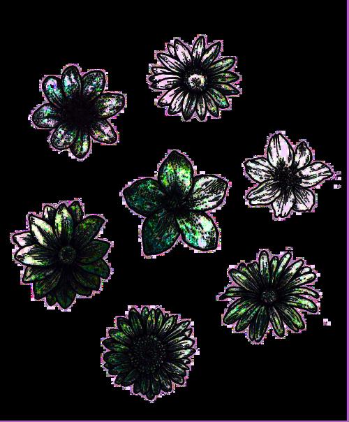 hippie my edit boho flowers transparent zentangles and sketches. Black Bedroom Furniture Sets. Home Design Ideas
