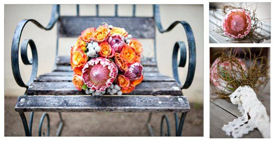 orange and protea - credit to Christine Watters, photographer extraordinaire <3