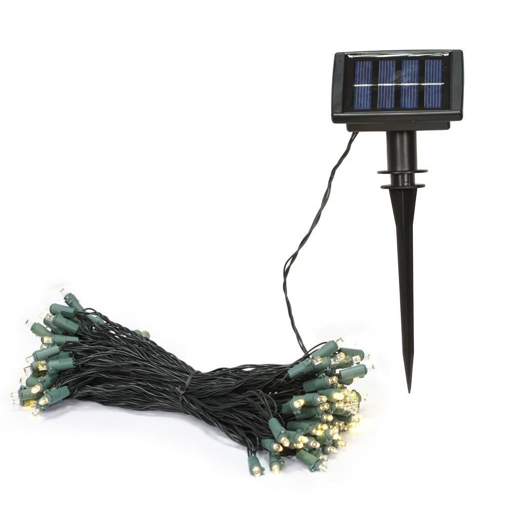 50 light warm white led solar set 6 hour timer 3 inch spacing 50 light warm white led solar set 6 hour timer 3 inch spacing sciox Gallery