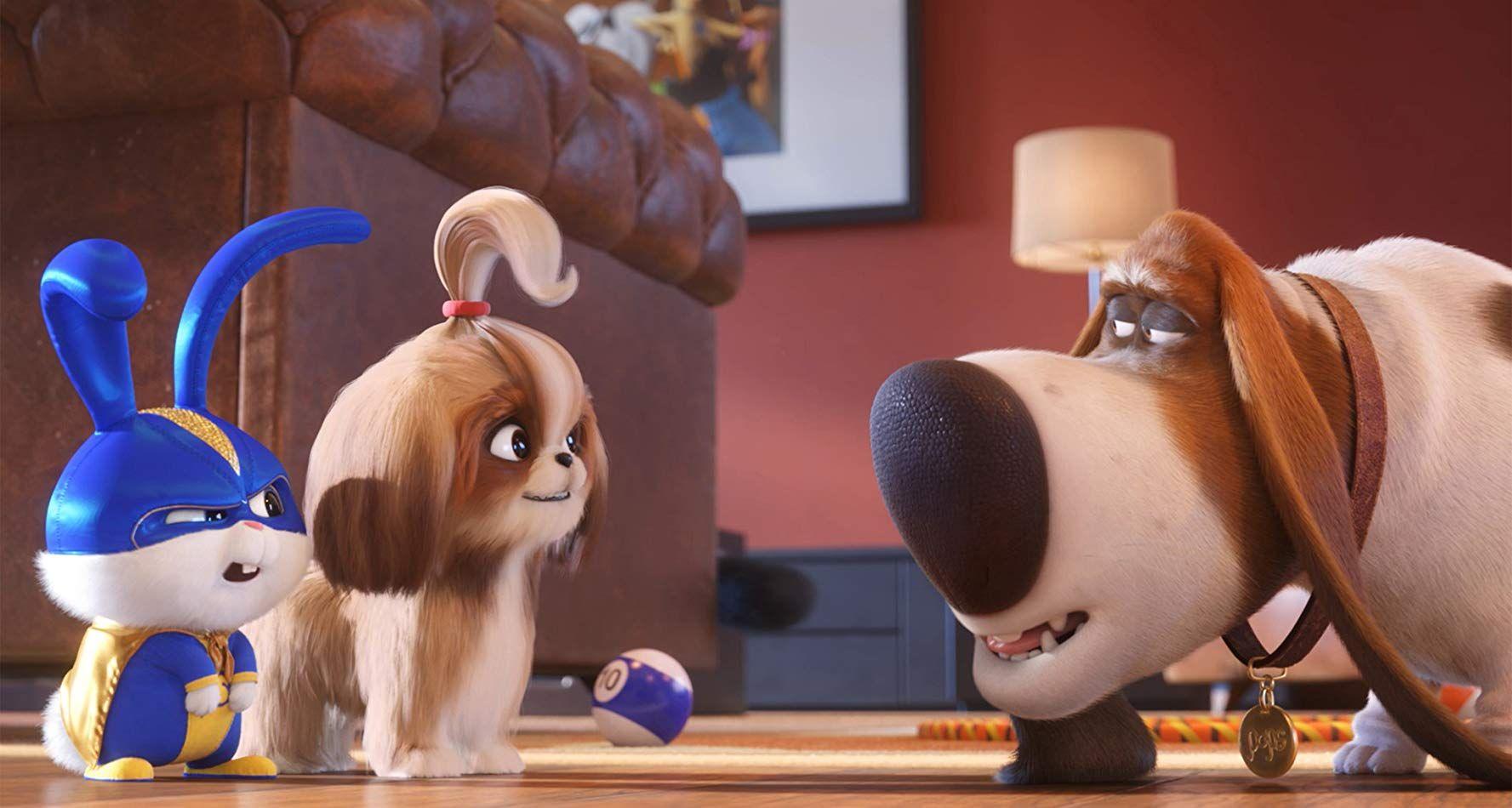 The Secret Life Of Pets 2 Watch Exclusive Movies Online Secret Life Of Pets Universal Pictures Secret Life