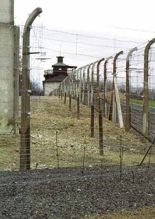 concentration camps in color - Google Search