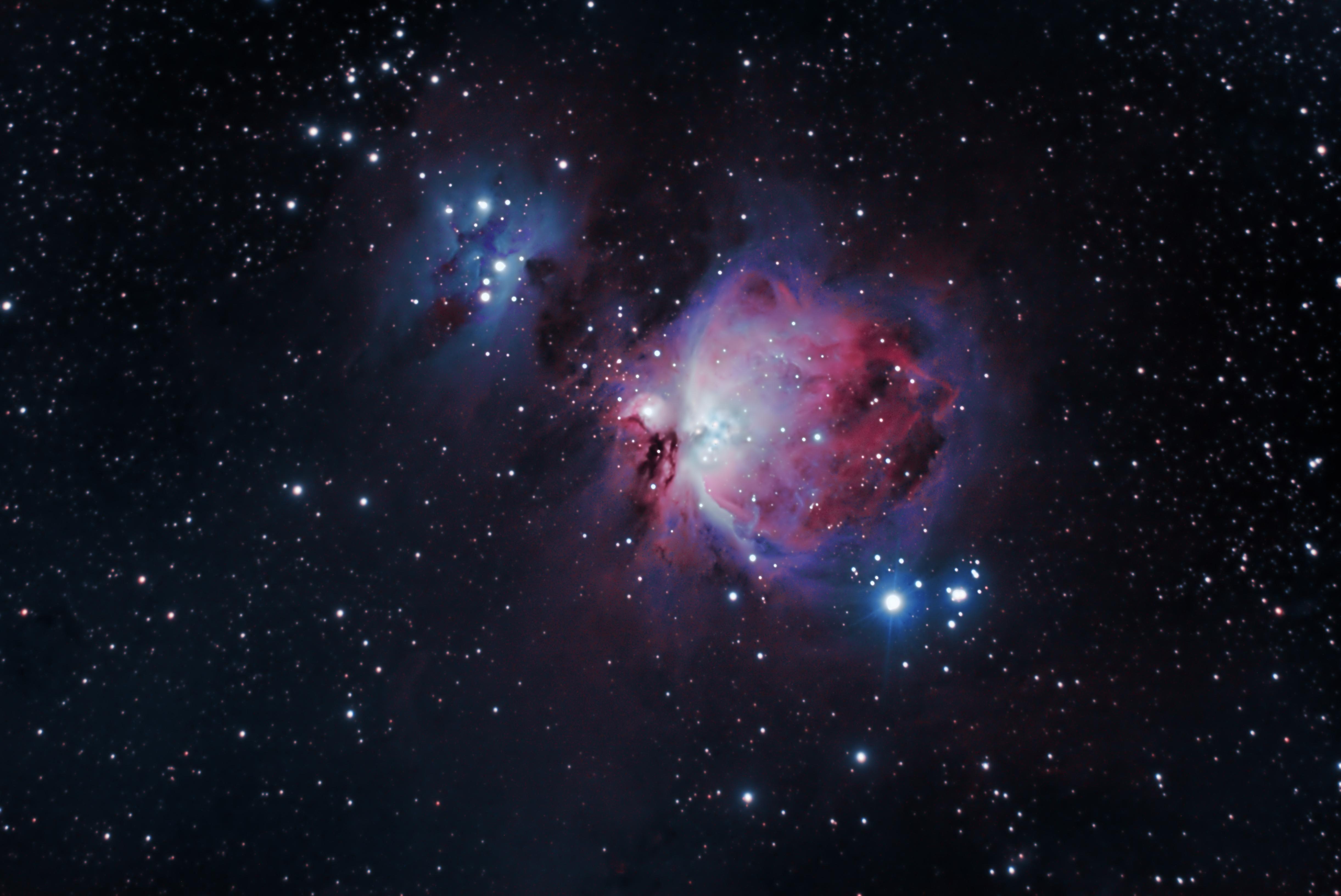 M42 The Orion Nebula | Orion nebula, Galaxies, Astronomy