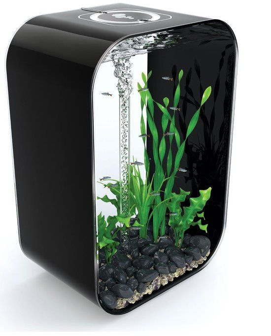 die besten 25 60 liter aquarium ideen auf pinterest. Black Bedroom Furniture Sets. Home Design Ideas