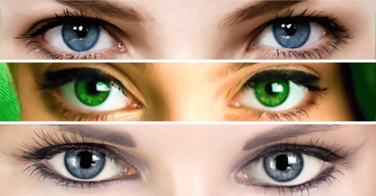 определить цвет глаз по фотографии птицы принадлежит роду
