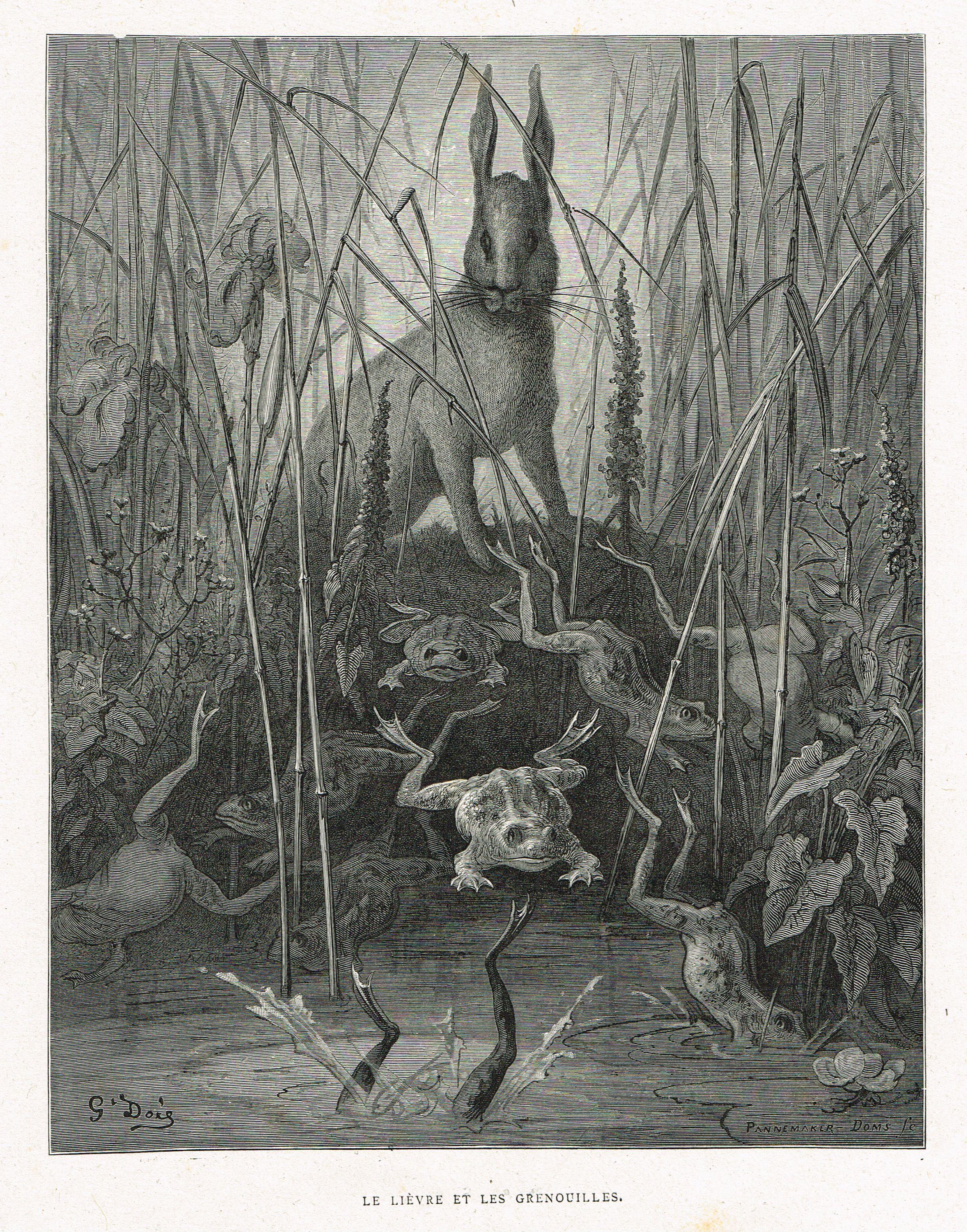 Le Lievre Et Les Grenouilles Fable De Jean De La Fontaine Illustree Par Gustave Dore Mas Estampes Anciennes Mas Antique Pr Gustave Dore Fairytale Art Art