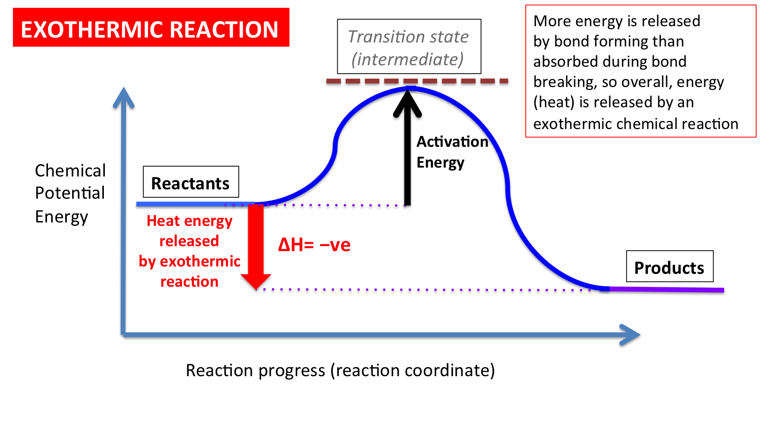 Exothermic Reaction Properties Google Search Exothermic Reaction Energy Activities Potential Energy