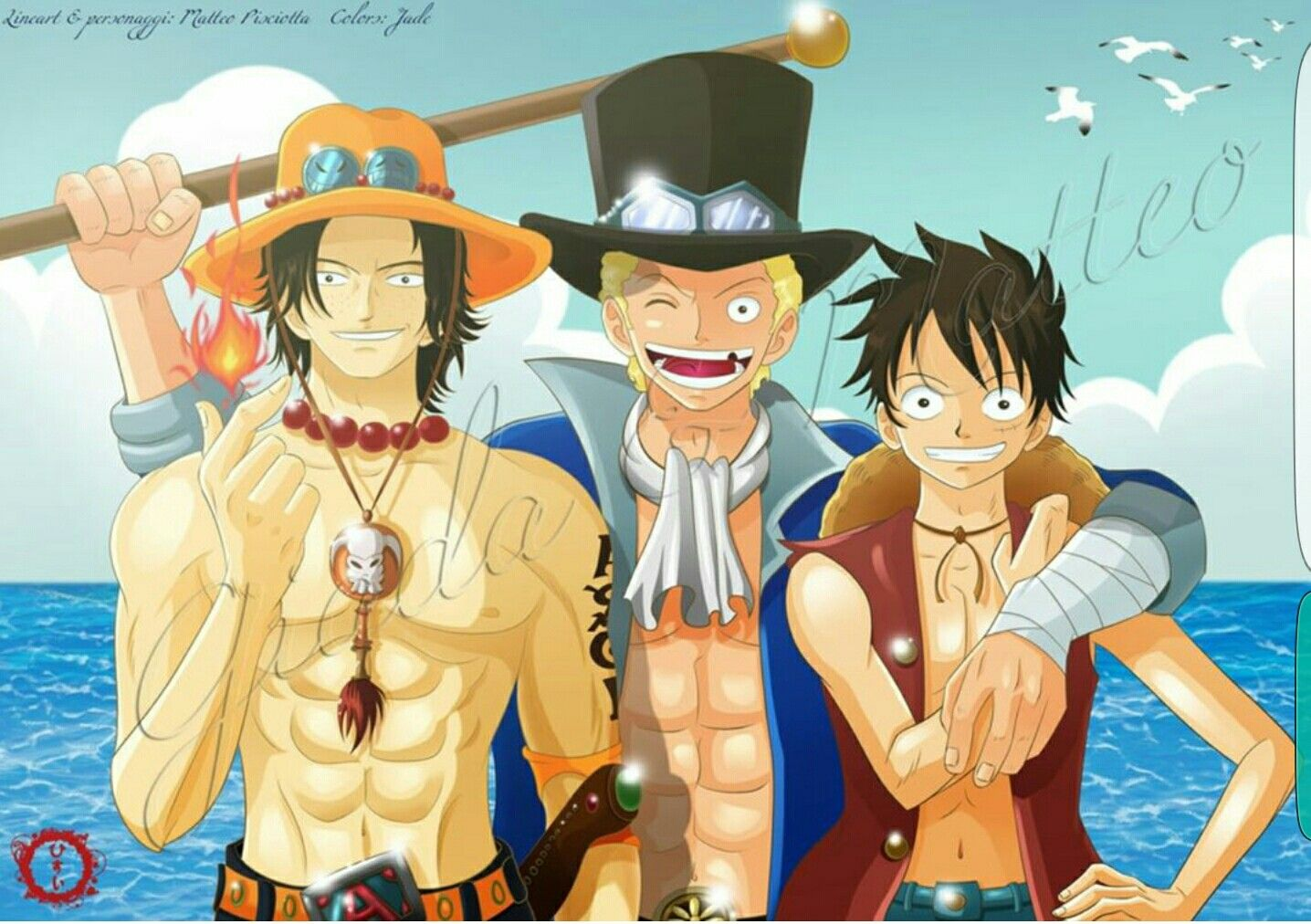 Luffy's brother