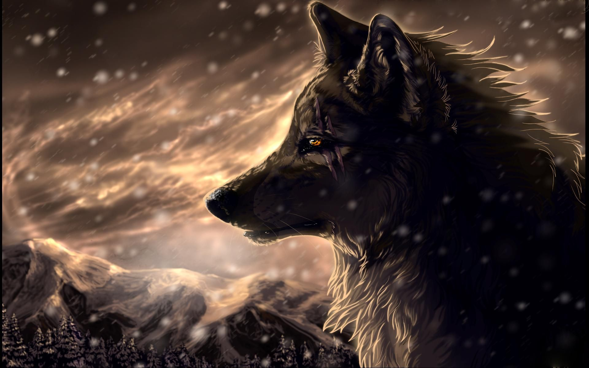 Pin By Scheff On The Wild Wolf Wolf Wallpaper Fantasy Wolf Wolf Images