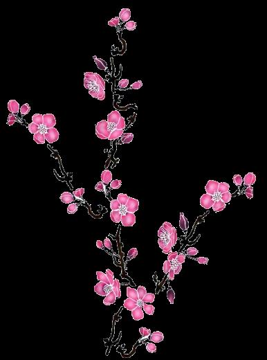 Fleurs roses cerisier estampes pinterest cerisier - Arbre japonais rose ...