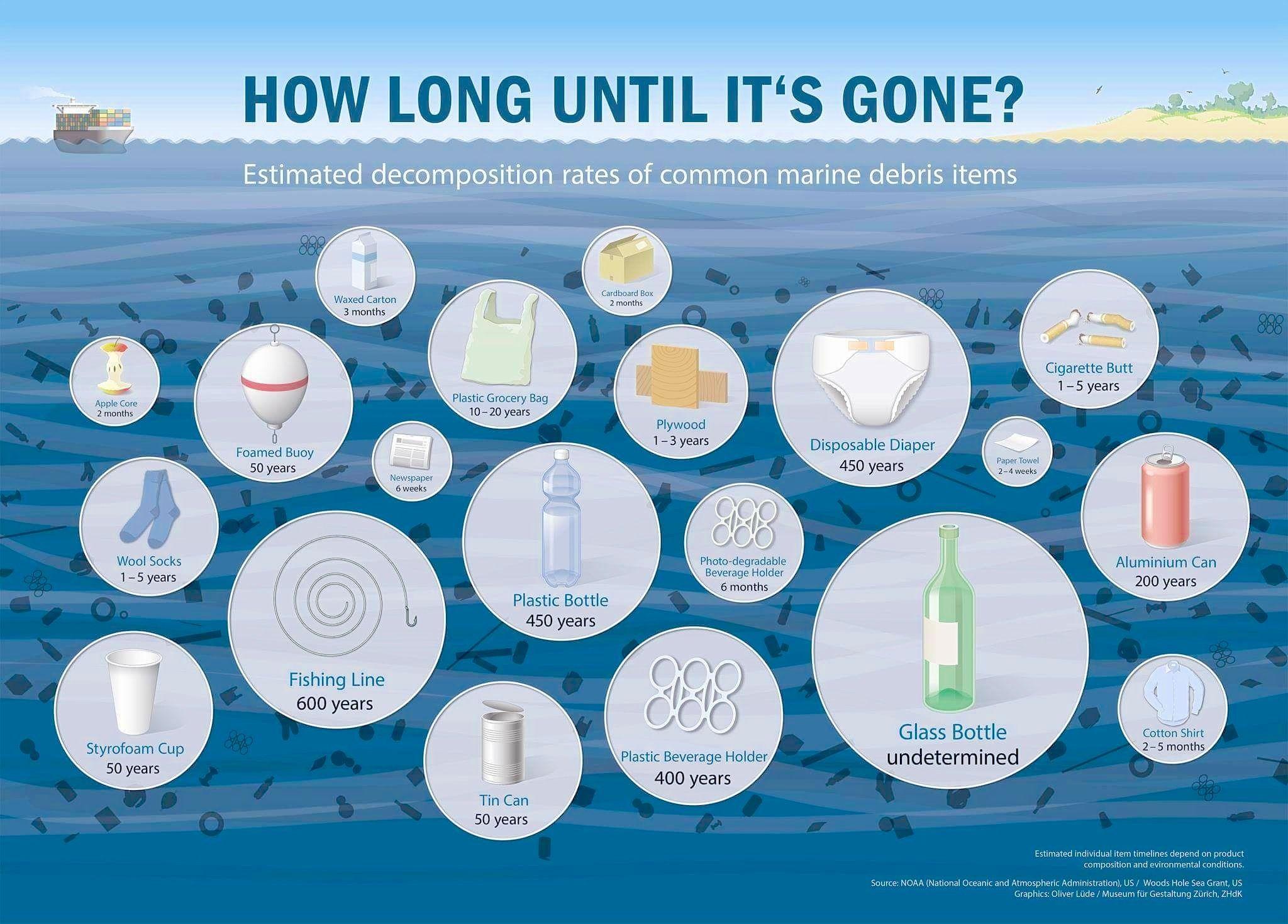 infographic microplastic Google Search Marine debris