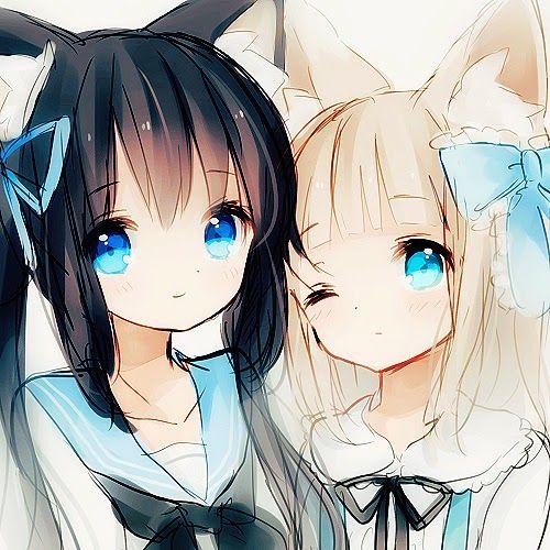 Striking Blue Eyed Neko Girls Anime Sisters