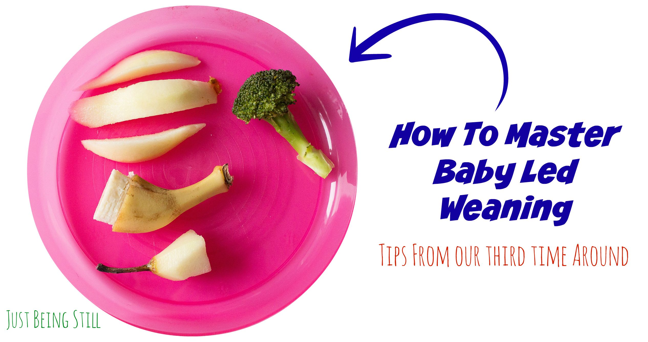 Healthy Food Recipes For One Year Old