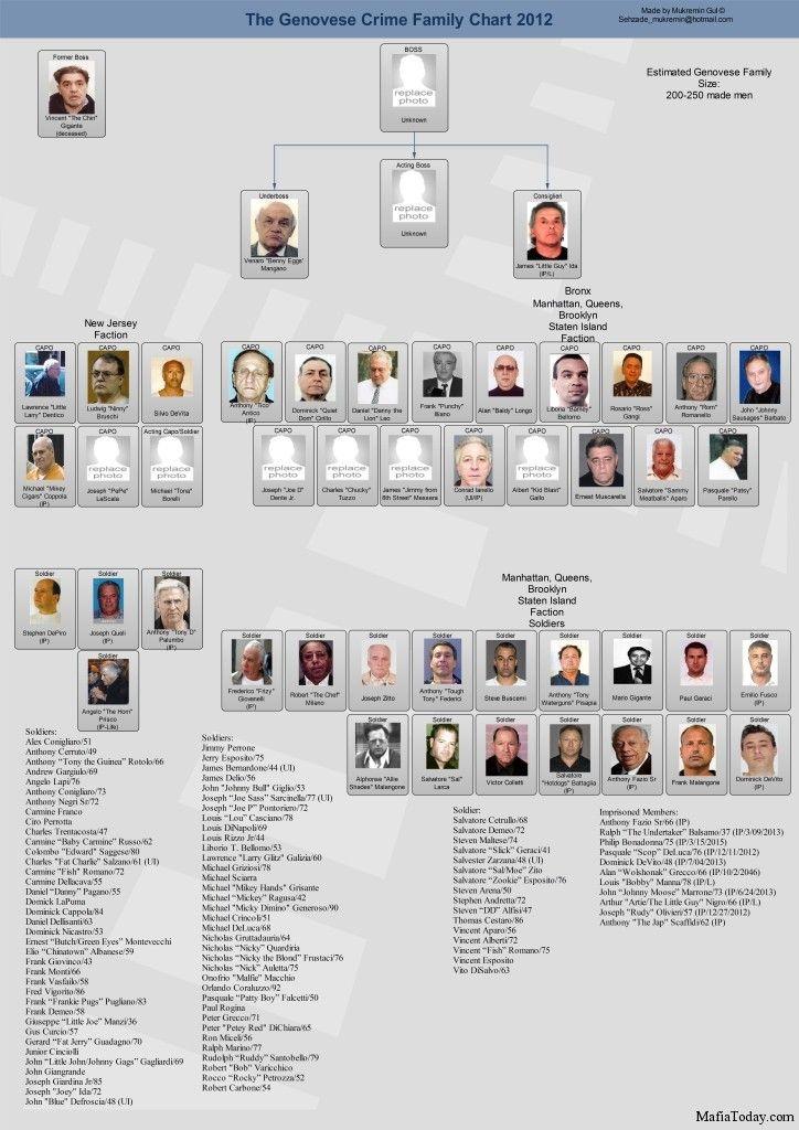 genovese family chart 2012