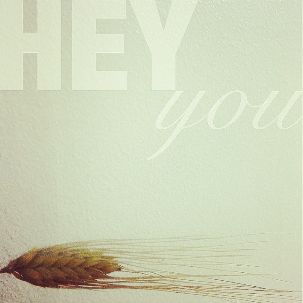 Hey you. Actually it's wheat. Hey helvetica?