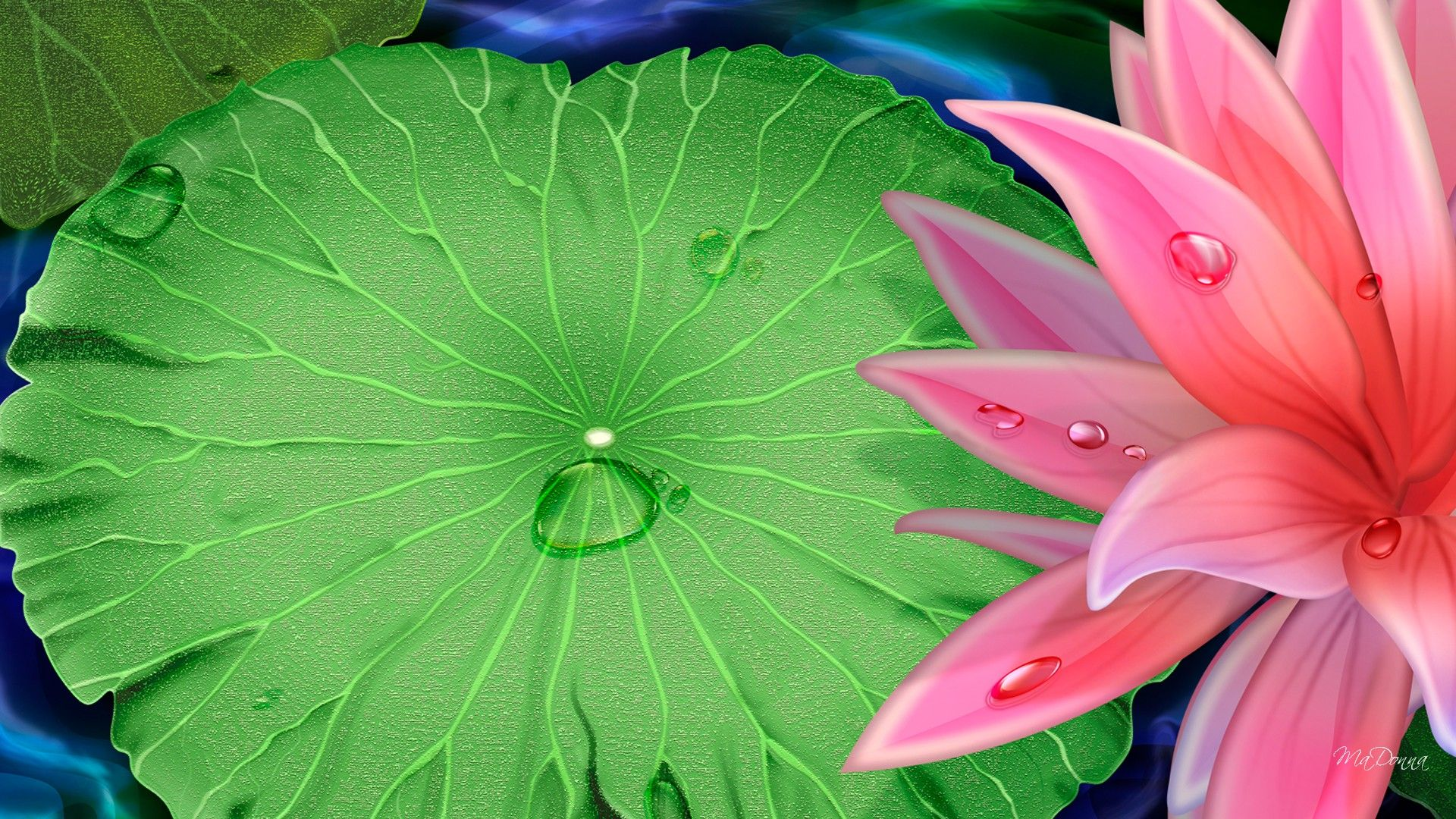Tattoo idea Flower wallpaper, Lily wallpaper, Lotus