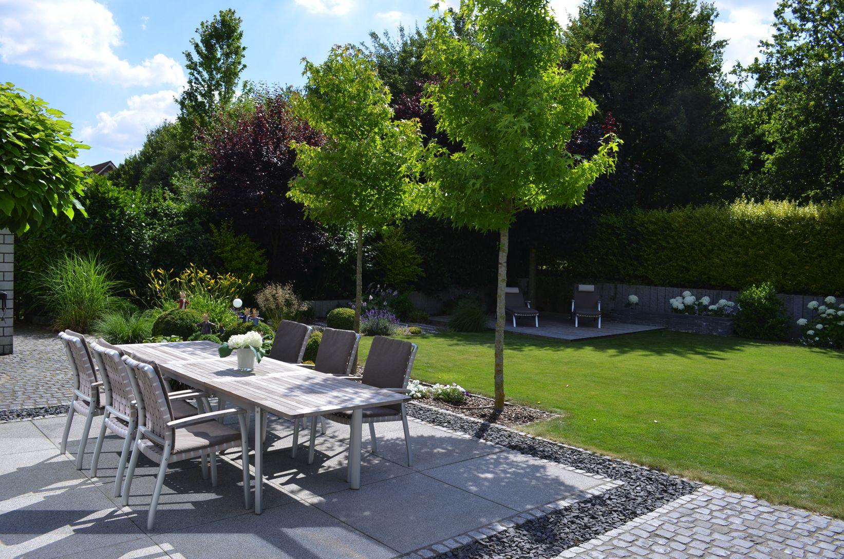 Photo of Kleinkronige Amberbäume spenden natürlichen Schatten für die Terrasse
