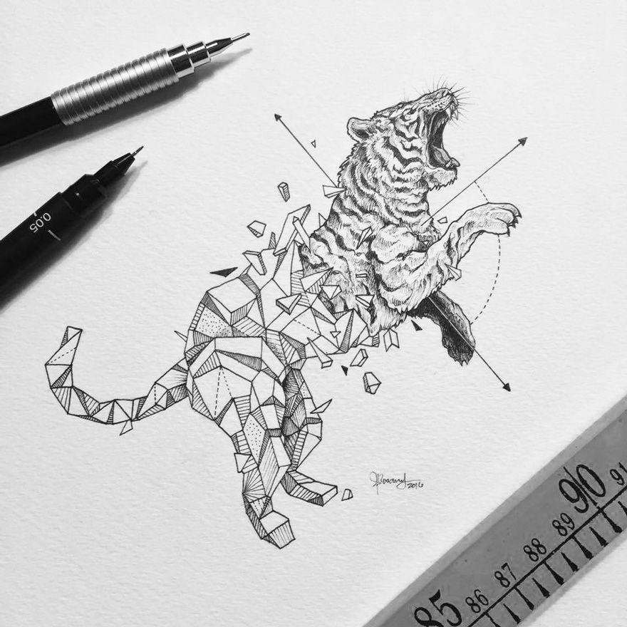 Kerby Rosanes Half Geometrical Drawings Tiger