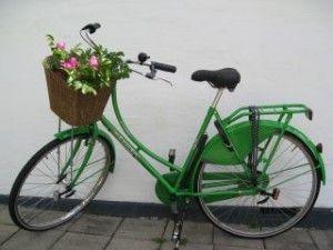 cykler med blomster - Google-søgning