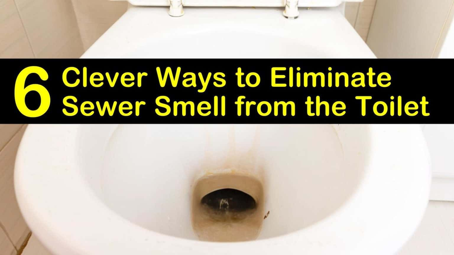 6 Clever Ways to Eliminate Sewer Smell from the Toilet in ...