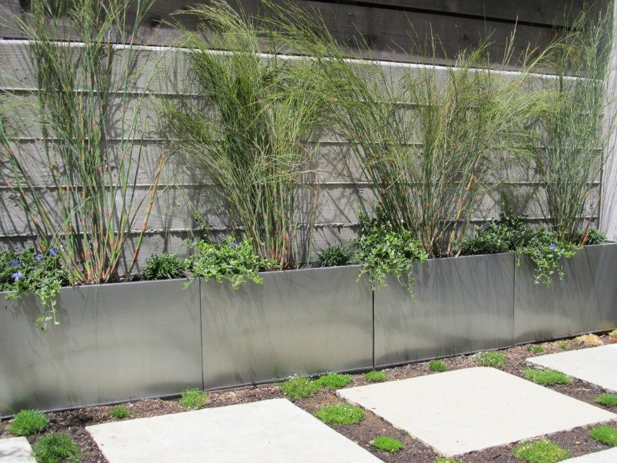 Garden Ideas To Hide A Wall hiding that b***h of a retaining wall…… | retaining walls, large