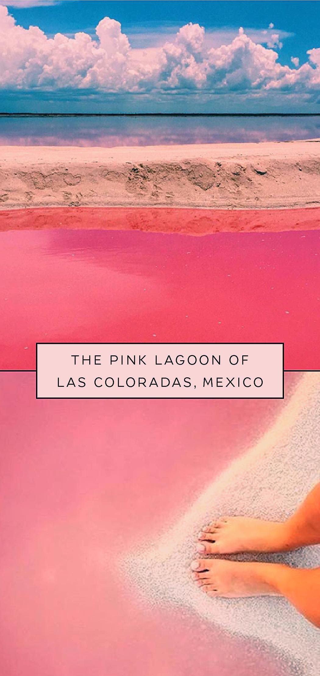 Photo of You Won't Need A Filter At This Beautiful Pink Lagoon In Mexico