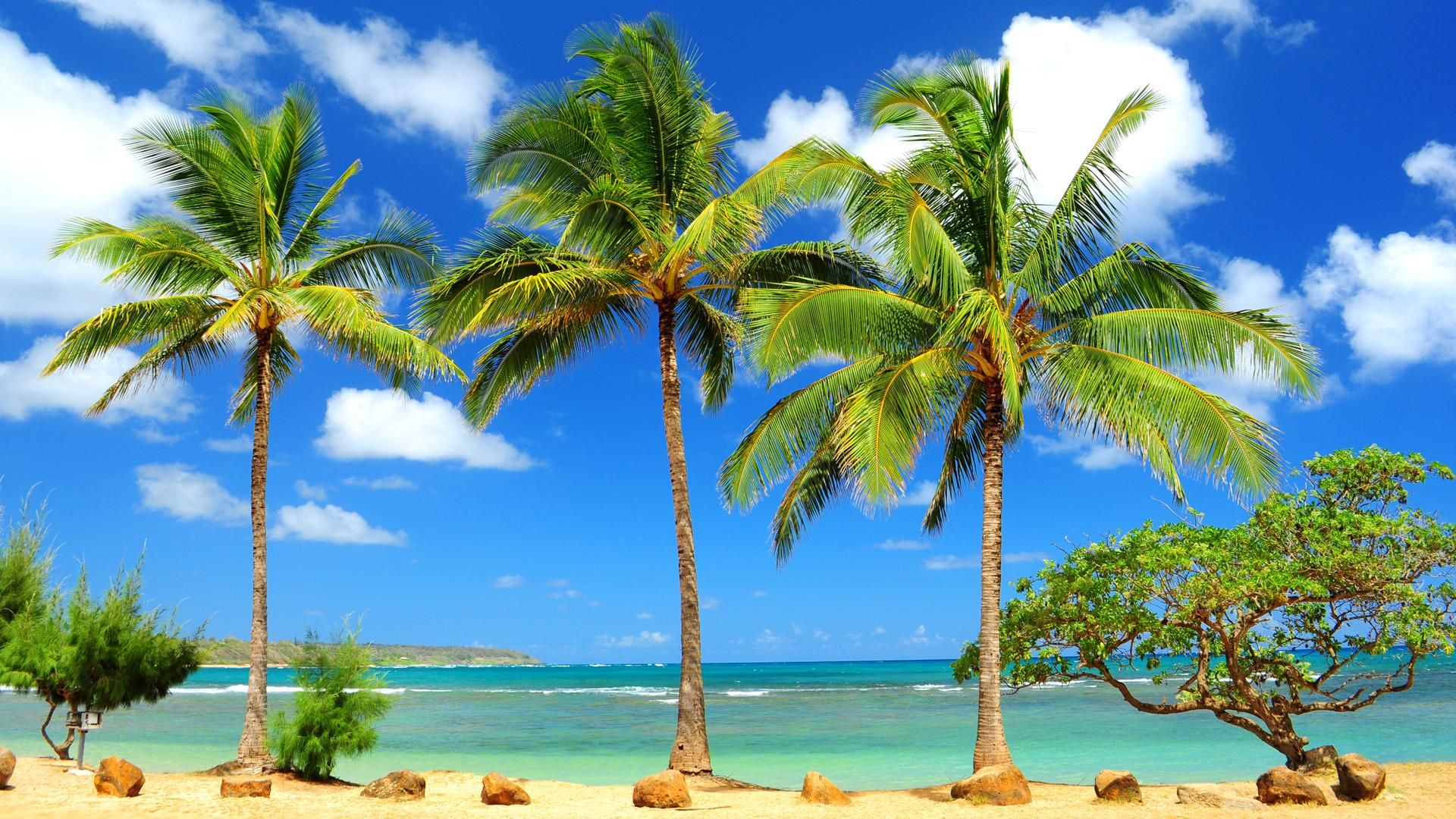 free caribbean beach wallpapers - wallpaper cave | images wallpapers