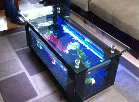table tanks | bespoke designer aquariums & custom fish tank