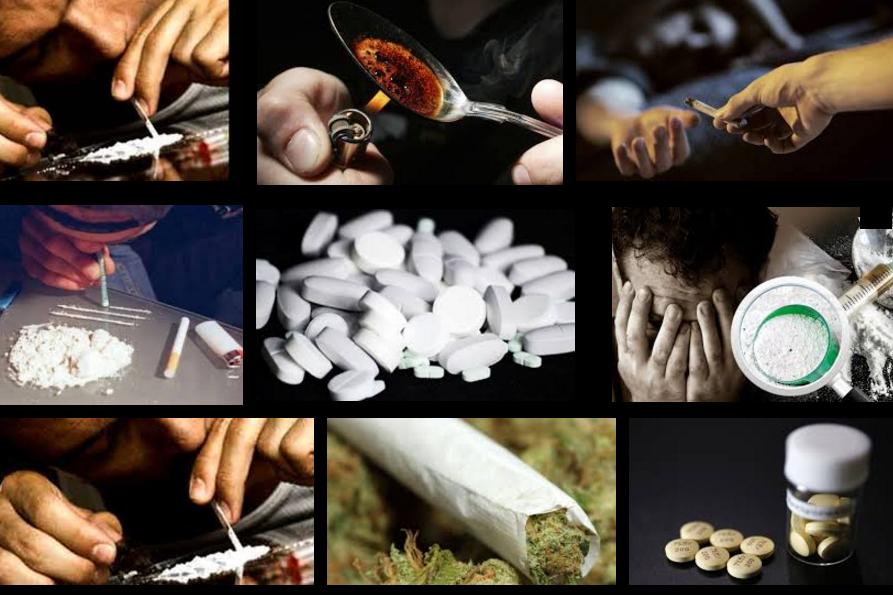 بحث عن المخدرات كامل مع المراجع موسوعة Stuffed Mushrooms Health Vegetables