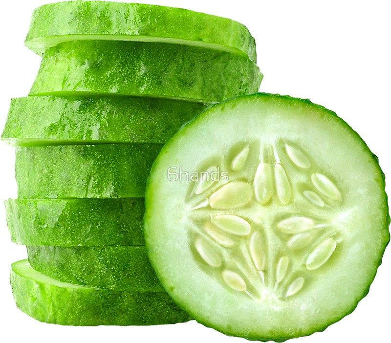 Cucumber Slices Sticker By 6hands Fruit Photography Cucumber Fruits And Veggies
