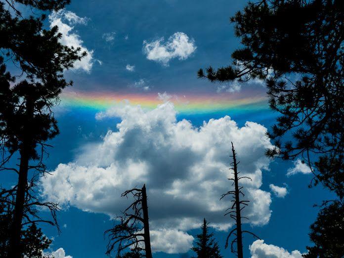 * Когда радуга, не радуга... / Округло-горизонтальная дуга ...