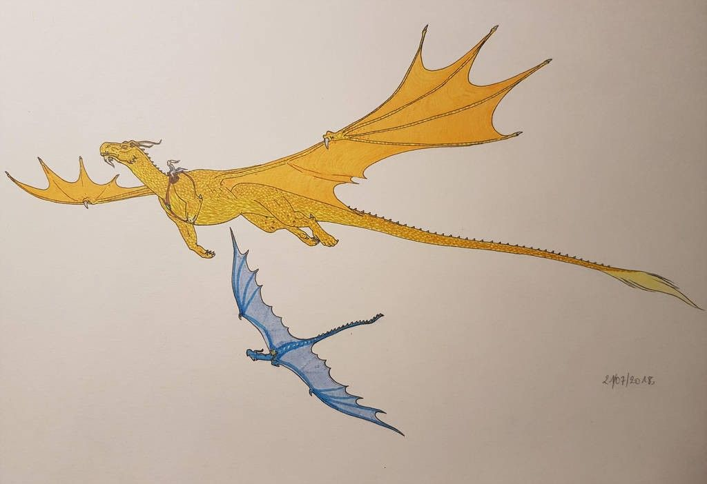 Glaedr And Saphira Flying Inheritance Cycle Dragon Tales Wings Of Fire Dragons Dragon armor gives your dragon some protection from damage. pinterest