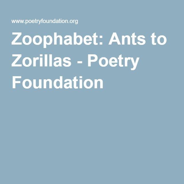 Zoophabet: Ants to Zorillas - Poetry Foundation | Poetry ...