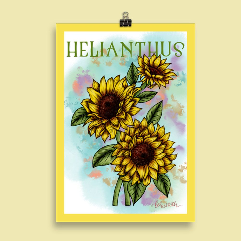 HELIANTHUS - Sunflower Flower Ink Watercolour Wall Art Poster ...