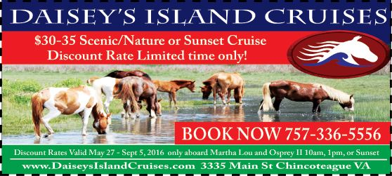 Don T Wait For Pony Penning To Get Up Close And Personal With The Famous Chincoteague Ponies Daisey S Island Cruises Sunset Cruise Chincoteague Island Cruise