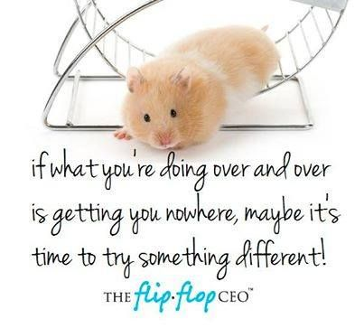 We Humans Often Get Stuck In A Hamster Wheel Of Habit We Do