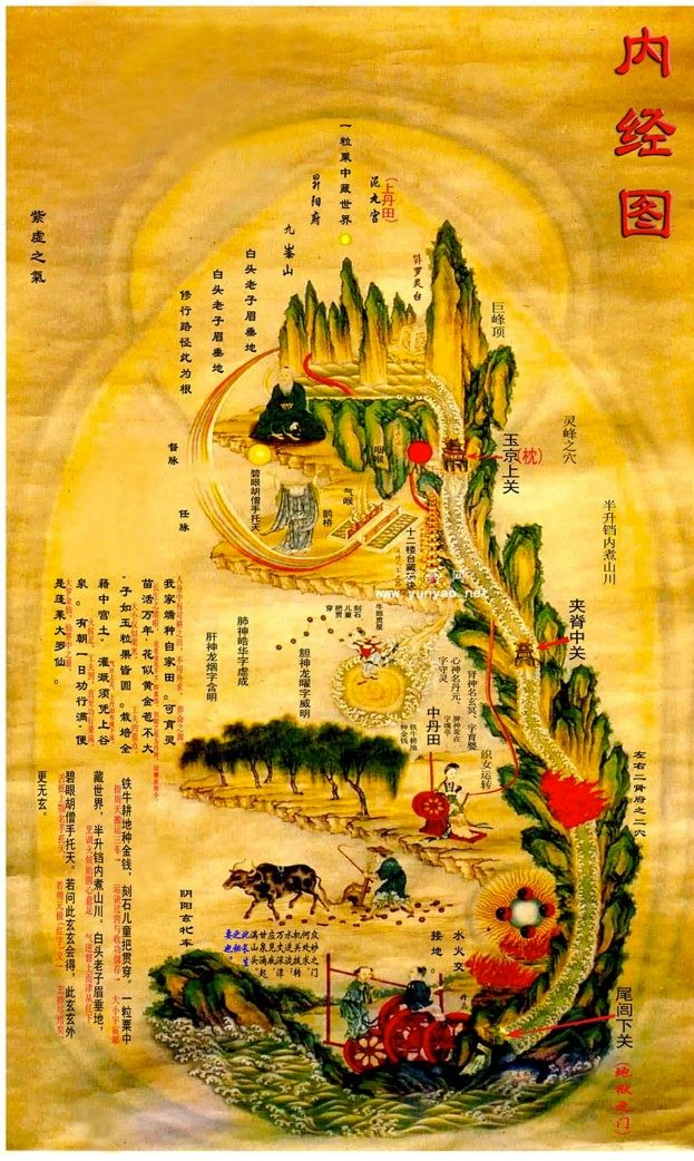The Nei Jing Tu Or Inner Landscape Mundus Imaginalis In 2019