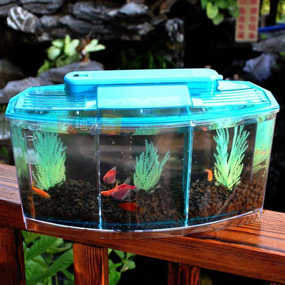 Details about 3 compartment acrylic fish tank small for Small fish tanks