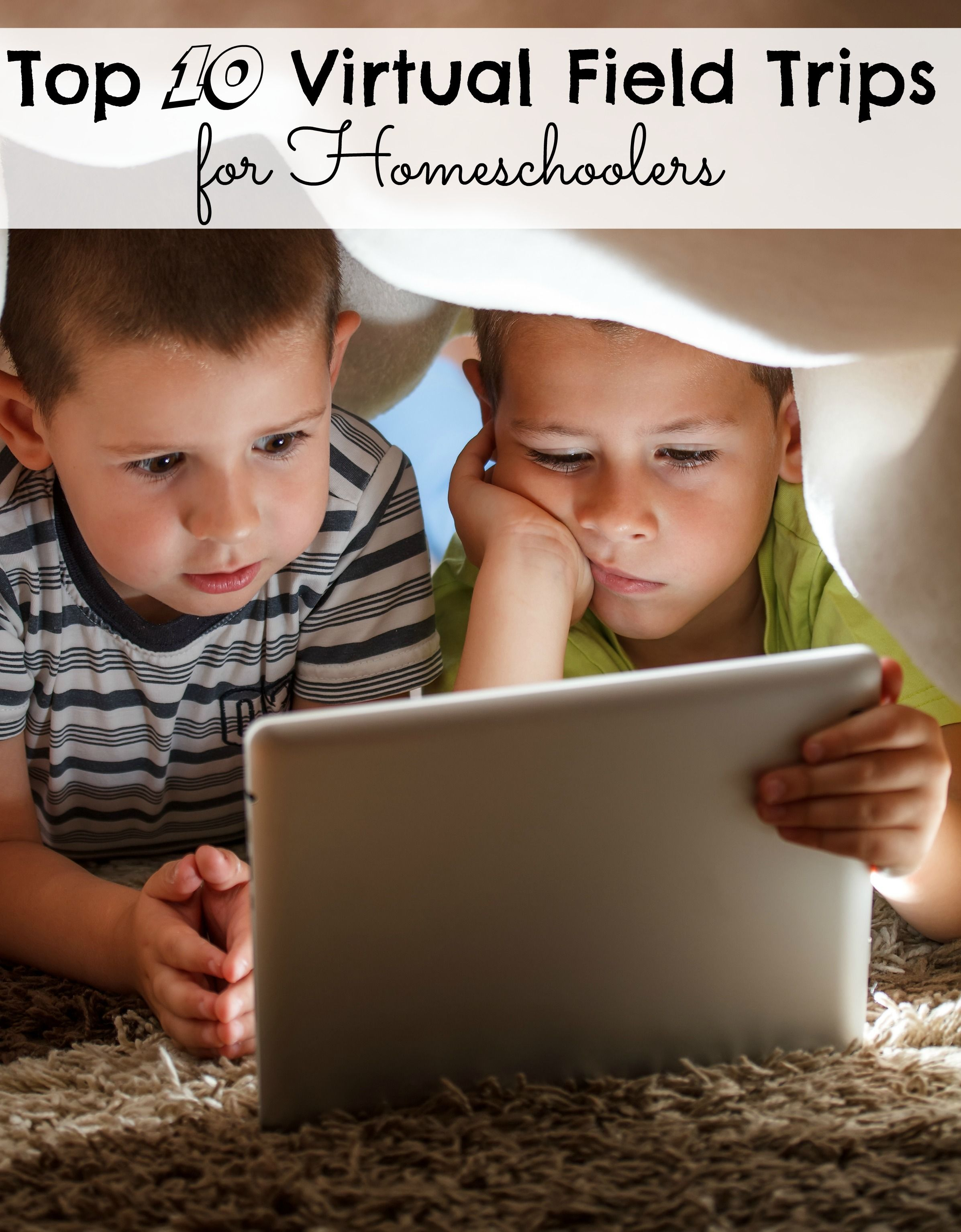 Top 10 Virtual Field Trips For Homeschoolers With Images