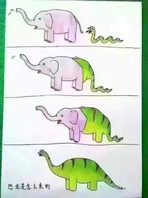 snake elephant
