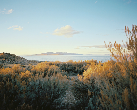 Antelope Island State Park, Utah by Trent Davis