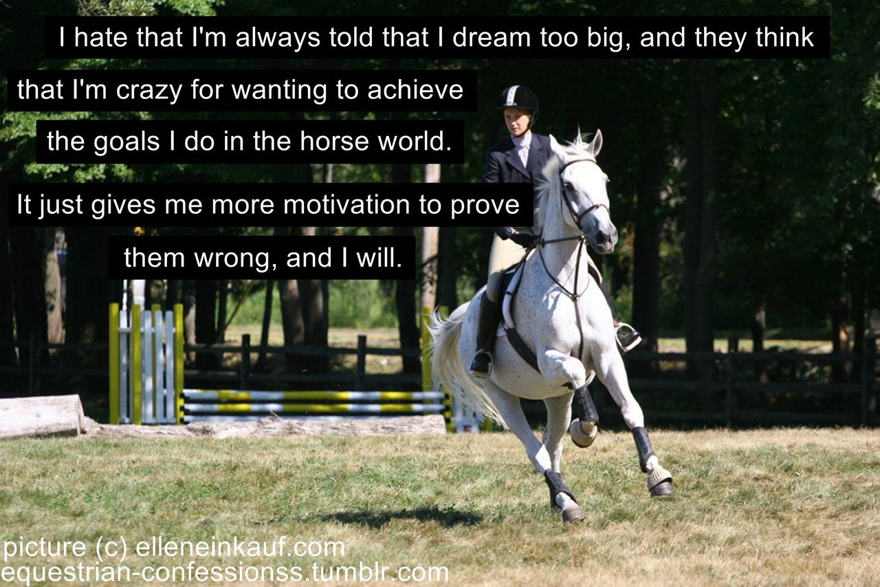 Funny Inspirational Horse Quotes