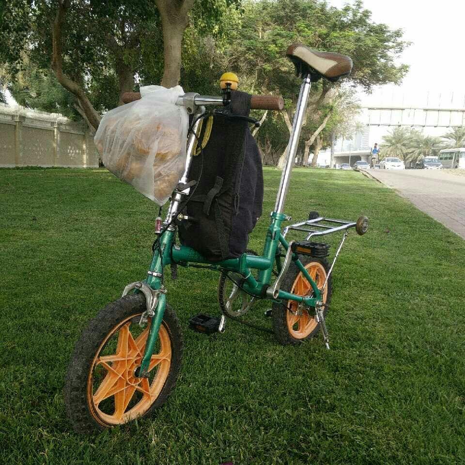 Road Puppy Folding Bike