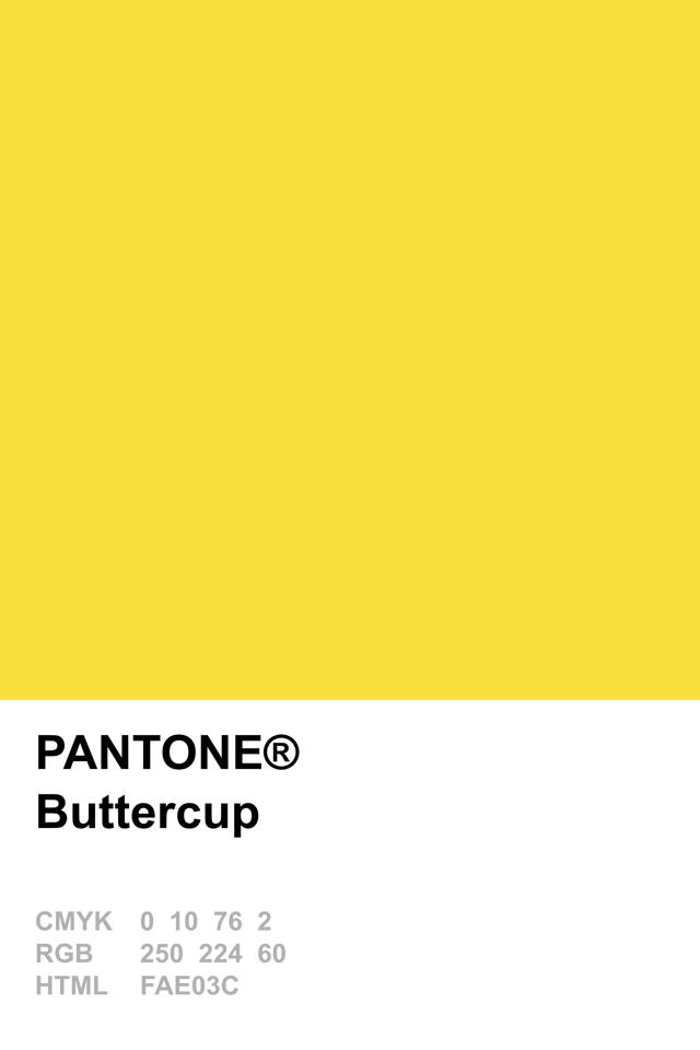 Lemon Zest Paint Color