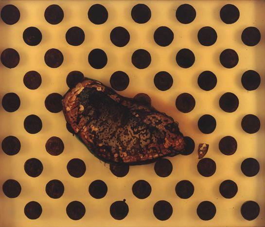 Sigmar Polke   Salamander Stone 1998, mixed media