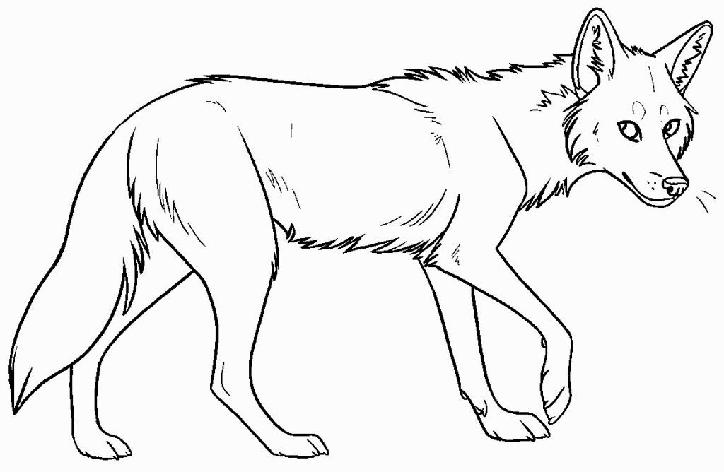 Coyote Coloring Pages Coyote Drawing Line Drawing Coyote