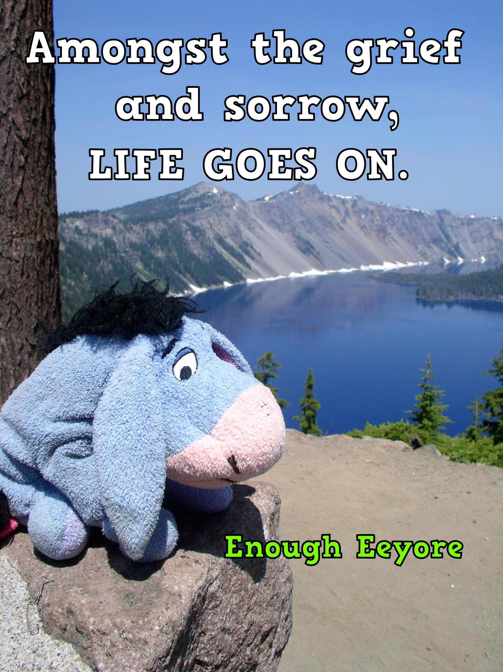Quote About Grief Grief Quotes Grief Quote Eeyore Quotes