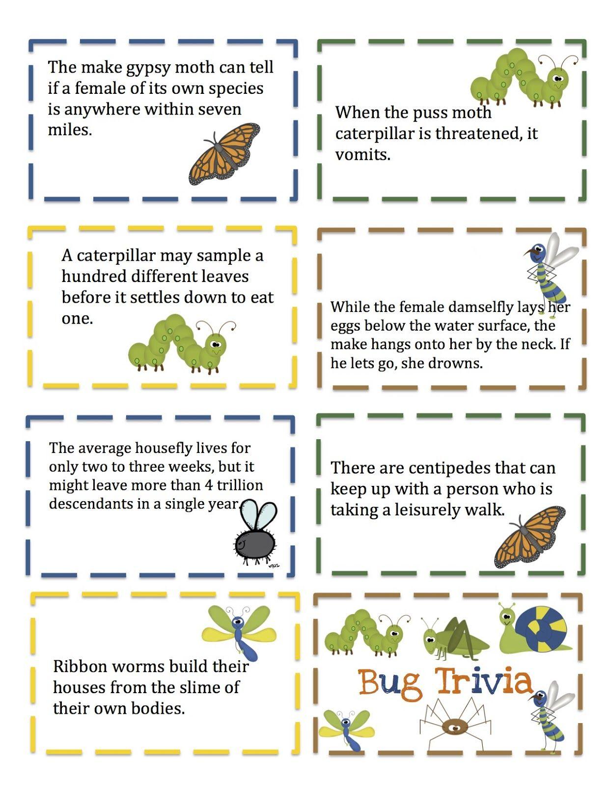 Preschool Printables Bugs