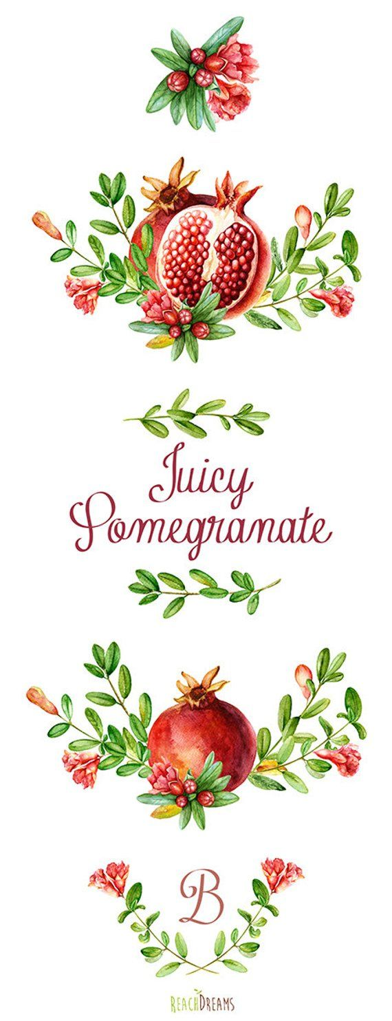 Pomegranate Watercolor Bouquets Hand Drawn Clip Art. Red fruit. Wall ...