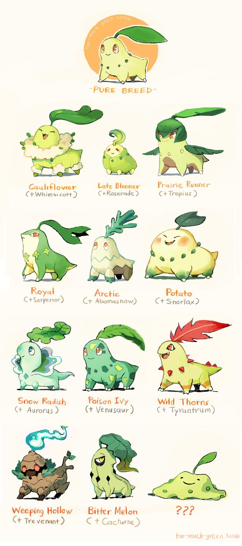 Chikorita Evolution Chart With Names